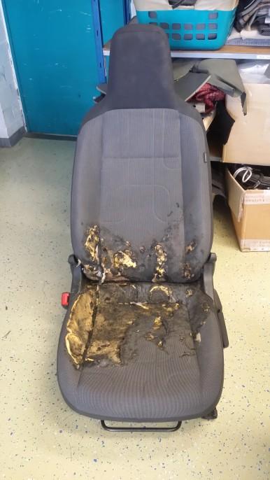 vorher-verbrannter Sitz